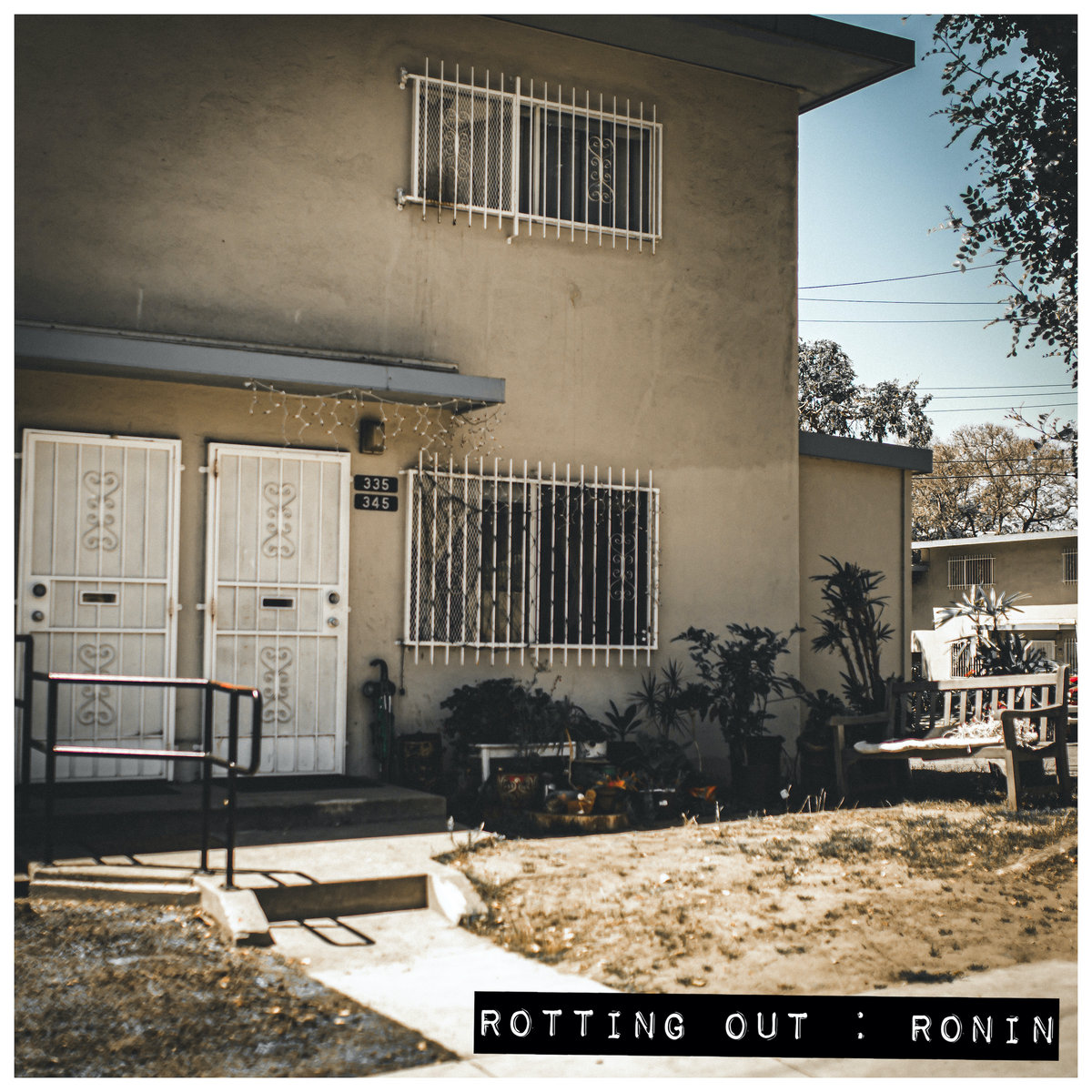 Rotting Out_Ronin